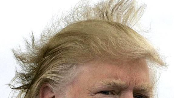 un pelo de tontos ideal
